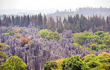 Stone Forest, Kunming, China (স্টোন ফরেস্ট, কুনমিং, চীন)